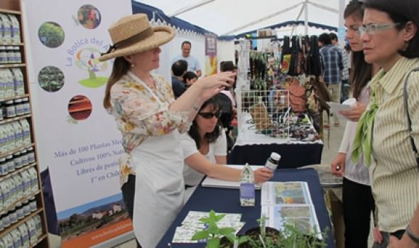 Municipalidad de Viña del Mar invita a 5ª Feria Verde en Viña del Mar