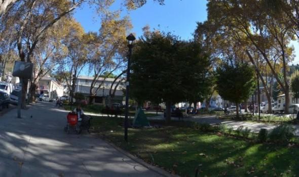 Municipio de Viña del Mar mejorará iluminación para sector de plaza Forestal