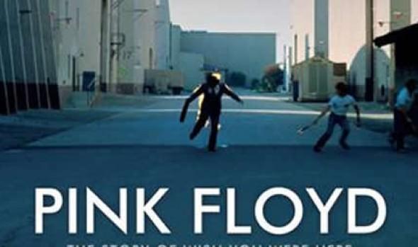 Municipalidad de Viña del Mar invita a presentación del documental de Pink Floyd