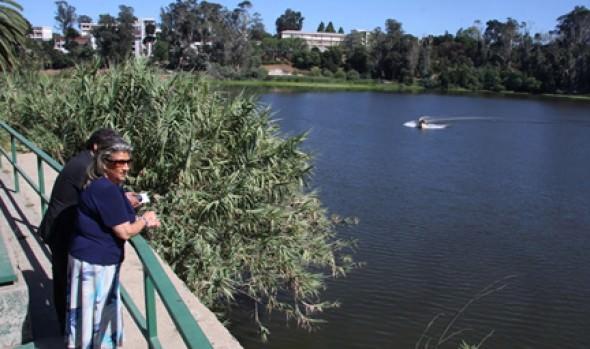 Alcaldesa Virginia Reginato inspeccionó el avance en los trabajos de limpieza de la Laguna Sausalito