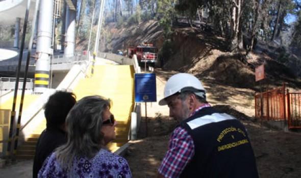 Su preocupación por incendios forestales en Viña manifestó alcaldesa  Virginia Reginato