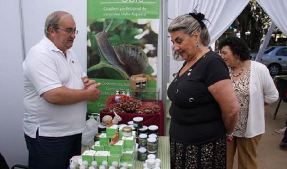 Municipalidad de Viña del Mar invita a inscribirse para participar en 2ª Expo Viña Gourmet