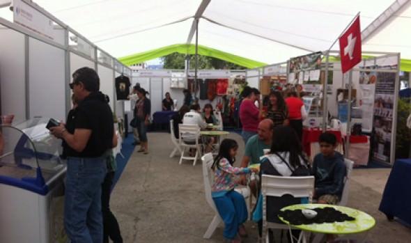 Municipalidad de Viña del Mar realiza Feria Microempresarial de verano