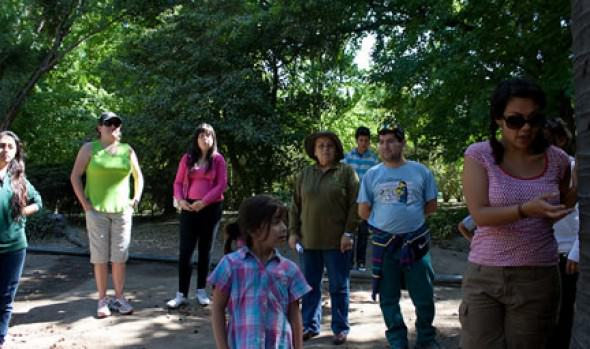 Cuatro  talleres gratuitos sobre patrimonio natural ofrece a niños y jóvenes el Municipio de Viña del Mar
