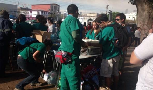 Municipalidad de Viña del Mar apoya con veterinarios para atender a animalitos afectados por la tragedia