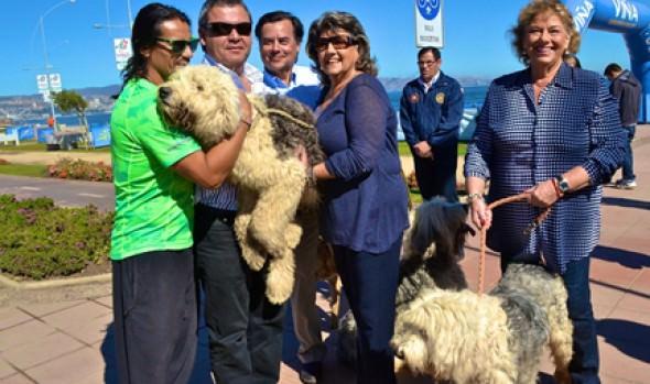 Antecedentes de las fechas de Perrorunning 2014 fueron dadas a conocer por alcaldesa Virginia Reginato