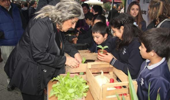 Con feria ecológica Municipalidad de Viña del Mar  celebró Semana de la Tierra
