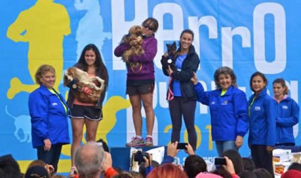 Masiva participación tuvo Perro running organizada por la Municipalidad de Viña del Mar