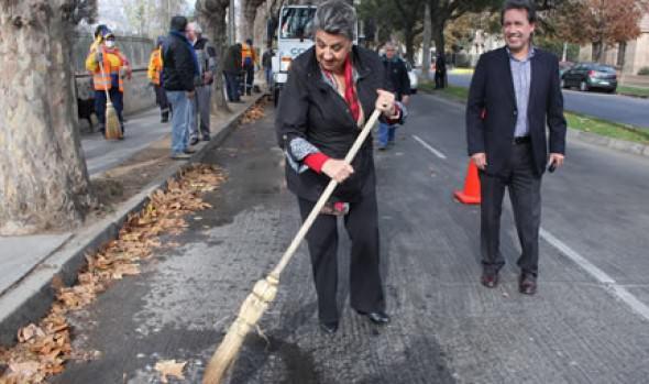 Municipalidad de Viña del Mar reutiliza para mejorar tierra de jardines, hojas secas de árboles