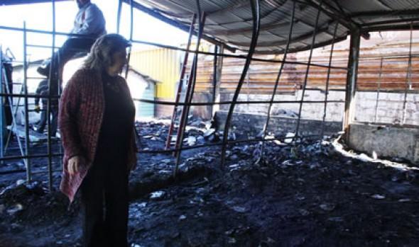 El lunes retomarán clases alumnos de Escuela Ministro Zenteno afectada por incendio, anunció alcaldesa Virginia Reginato