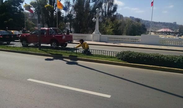 Municipio de Viña del Mar avanza en trabajos de embellecimiento de la ciudad