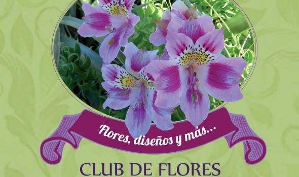 """Municipio de Viña del Mar invita a ver exposición """"Flores, diseños y más""""  en Castillo Wulff"""