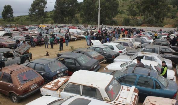 Con éxito, Municipalidad de Viña del Mar   realizó remate de vehículos
