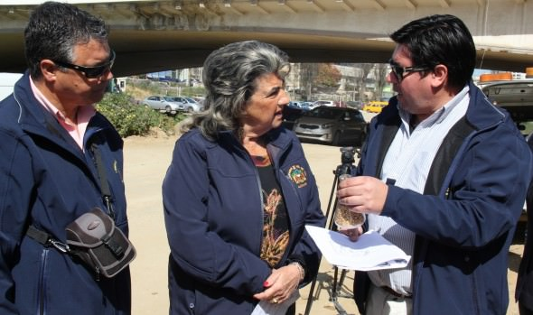 Municipio de Viña del Mar inició proceso de control  integrado para evitar presencia de zancudos