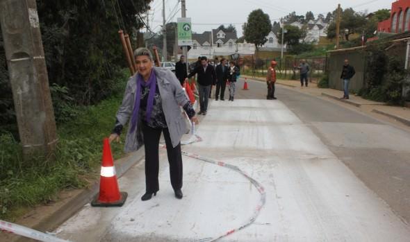 Programa municipal de reparación y bacheo de calles de Viña del Mar avanza con obras en calle Limache