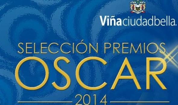 Municipio de Viña del Mar exhibirá dos películas ganadoras de los premios Oscar 2014