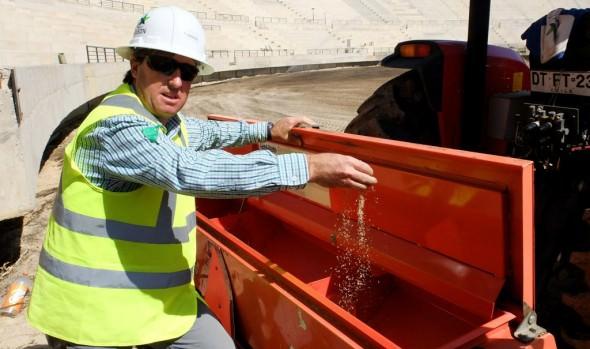 Municipio de Viña del Mar informa que se sembró el pasto para la cancha de nuevo estadio Sausalito
