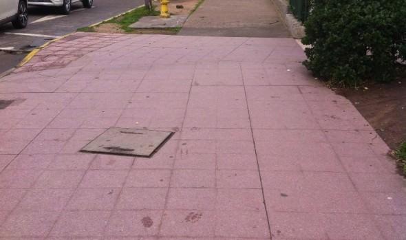 Municipio de Viña del Mar adjudica ejecución de obras para circuito peatonal de  14 norte