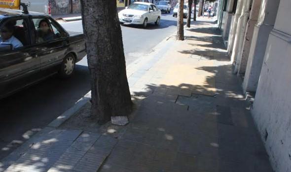 Municipio de Viña del Mar iniciará reposición de aceras en calle Von Schroeders