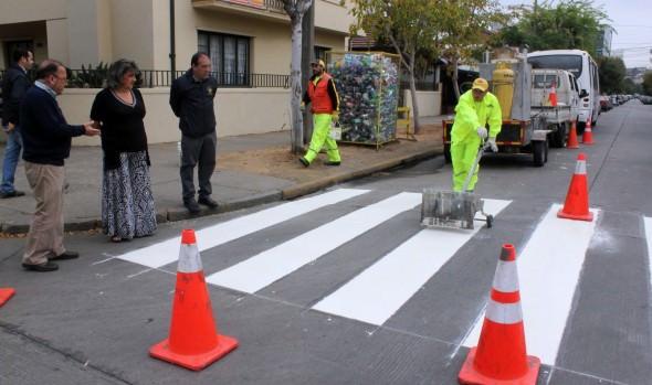 Municipio de Viña del Mar refuerza repintado vial para potenciar seguridad de estudiantes