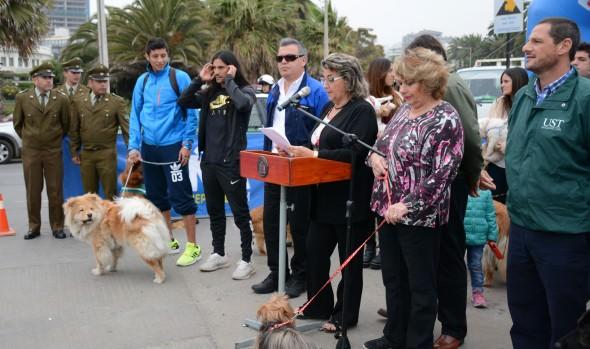 Siete fechas tendrá temporada 2015 de las perrorunning, organizadas por la Municipalidad de  Viña del Mar