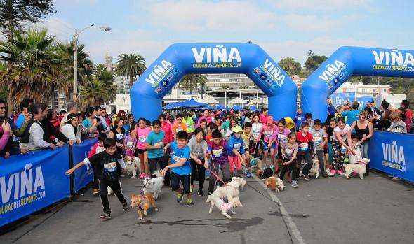 Con gran número de participantes, Municipio de Viña del Mar, realizó Primera Perrorunning 2015