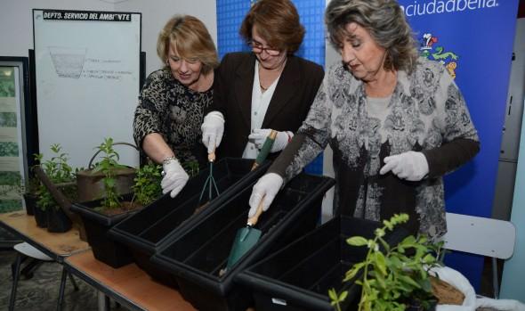 Municipio de Viña del Mar implementa programa de huertos urbanos orgánicos