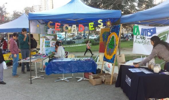 Municipio de Viña del Mar conmemoró el Día Mundial del Medio Ambiente con feria educativa
