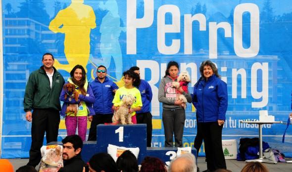 Masiva participación  tuvo tercera fecha de las perrorunning organizada por el municipio de Viña del Mar