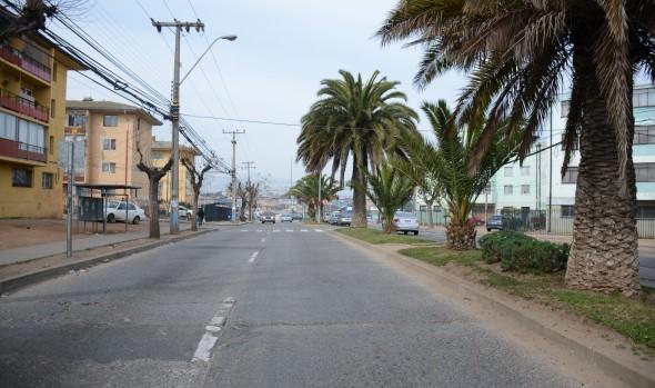 Municipio de Viña del Mar repondrá principales vías de Gómez Carreño