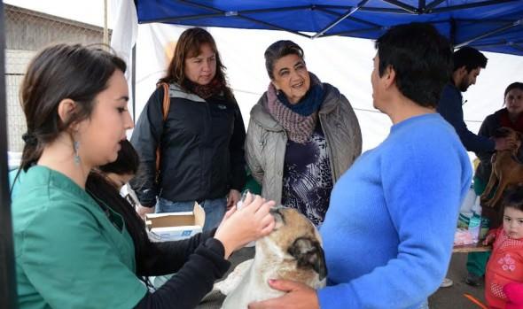 Importante ayuda a sectores altos lleva Municipio de Viña del Mar con plan de operativos sociales
