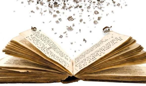 Municipalidad de Viña del Mar invita a Taller de prácticas lectoras