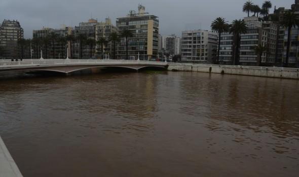Plan de manejo al estero que evitó desborde en la última lluvia destacó alcaldesa Virginia Reginato