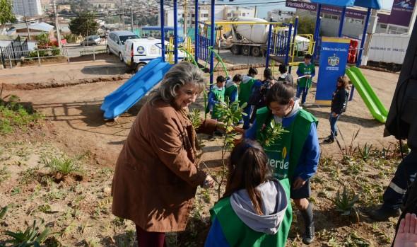 Municipalidad de Viña del Mar recupera microbasurales y los convierte en espacios públicos de recreación