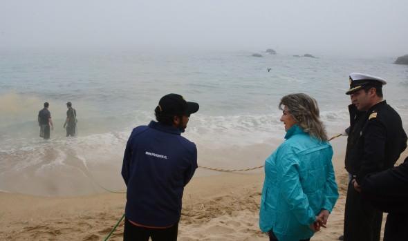 Municipio de Viña del Mar retira  estructuras metálicas en playa Caleta Abarca