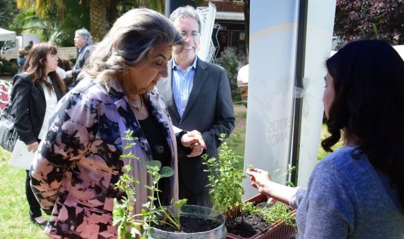 1ª feria sustentable realizará municipio de Viña del Mar en jardines de la Quinta Vergara