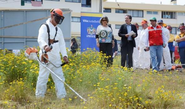 Municipio de Viña del Mar aumenta extensión de cortafuegos  para prevenir áreas de riesgos en incendios forestales
