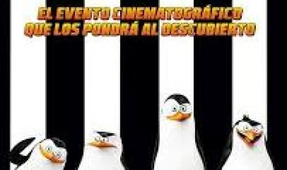 """En el anfiteatro Quinta Vergara se exhibirá la película """"Los pingüinos de Madagascar"""""""