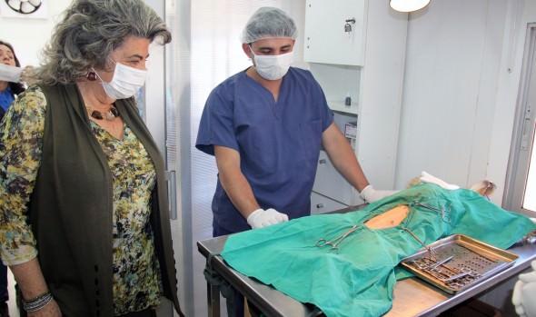 Municipio de Viña del Mar continúa desarrollando programa de esterilización canina