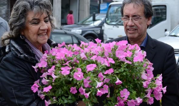 Macetas ornamentales subirán a  1.700 en la ciudad de Viña del Mar
