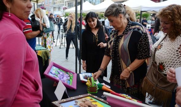 Municipio de Viña del Mar invita a la comunidad a participar en programa gratuito de capacitaciones 2016