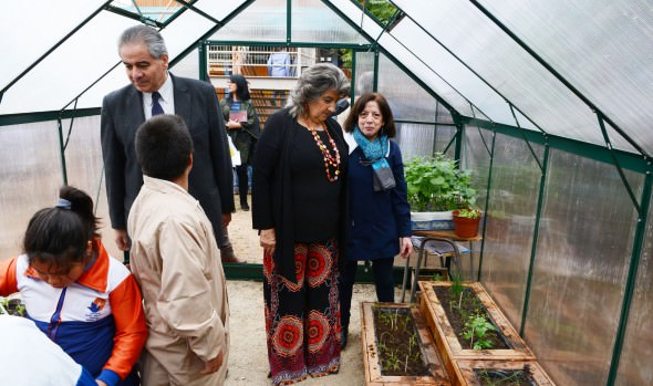 Escuela municipal Salvador Allende de Viña del Mar recibe certificación medio ambiental