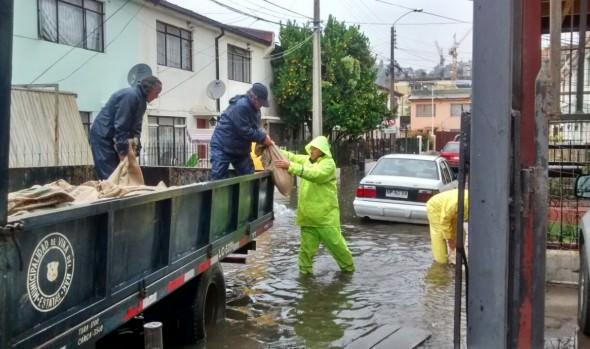 Municipalidad de Viña del Mar informó de emergencias menores por sistema frontal