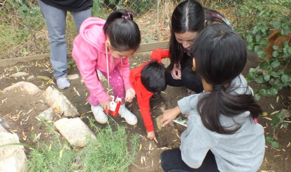 Talleres de patrimonio natural realiza el Municipio de Viña del Mar  en  Jardín Botánico Nacional para alumnos de educación básica
