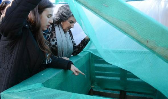 Municipio de Viña del Mar ejecuta proyecto piloto de Eco sede en Gómez Carreño