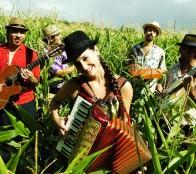 Municipio de Viña del Mar invita a  concierto de Pascuala Ilabaca y grupo Fauna