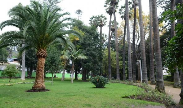 Parque de la Quinta Vergara estará cerrado al público la próxima semana