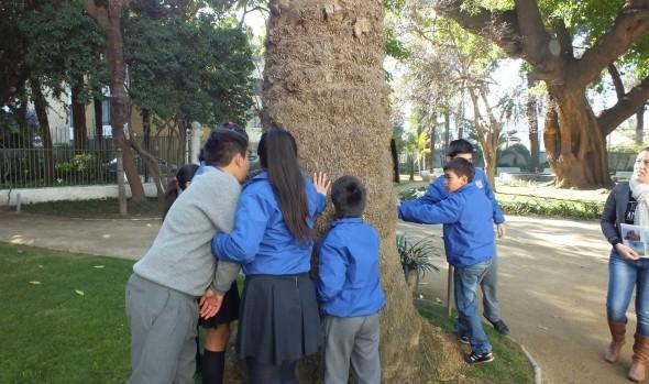 Alumnos de escuelas Municipales de Viña del Mar conocen distintas especies que componen patrimonio natural de los jardines del Palacio Rioja