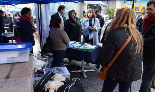 Municipio de Viña del Mar realizará nuevo operativo veterinario en plan de la ciudad
