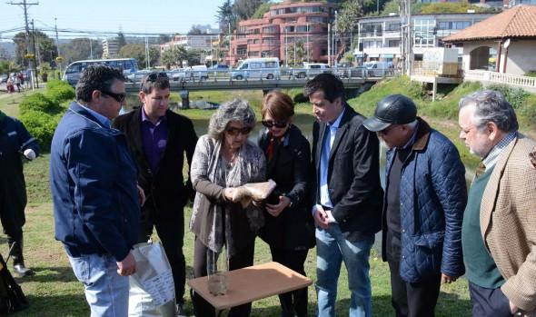 Municipio de Viña del Mar previene presencia de zancudos adelantando control en estero de Reñaca